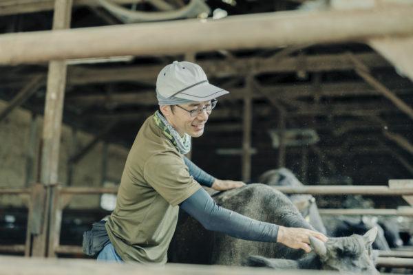 飼育員が牛を撫でている写真